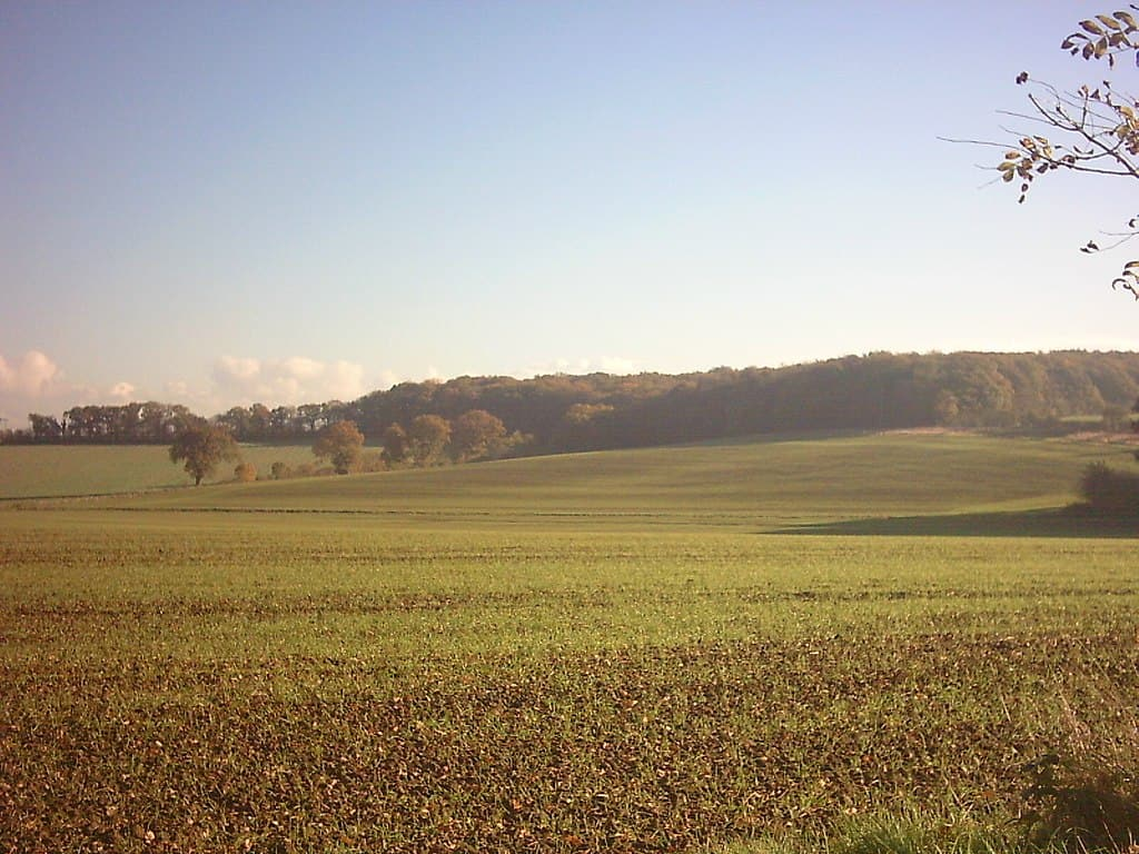 1024px-Suffolk_Rolling_Countryside_-_geograph.org.uk_-_80456