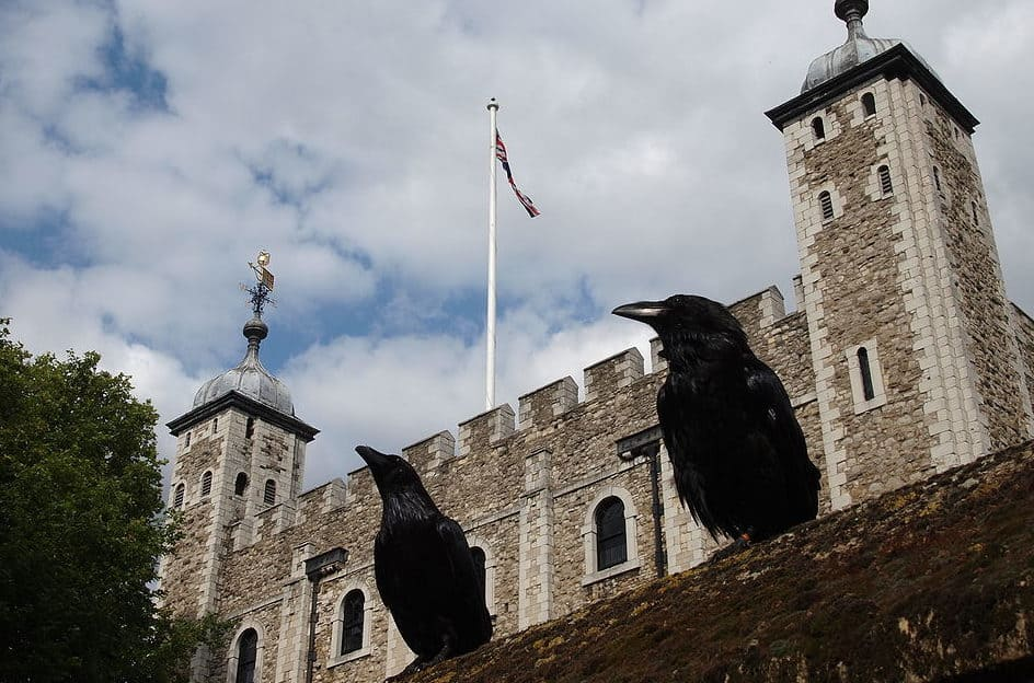 1024px-Two_ravens_and_the_Tower_of_London-e1506445551442