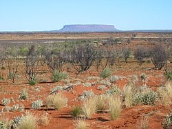250px-Outback