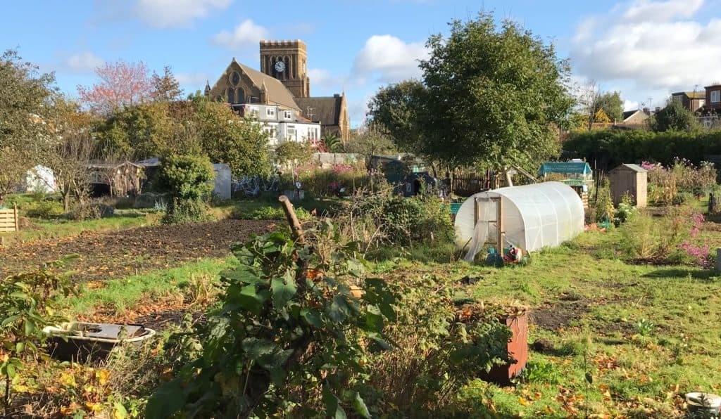 Northfield_Allotments