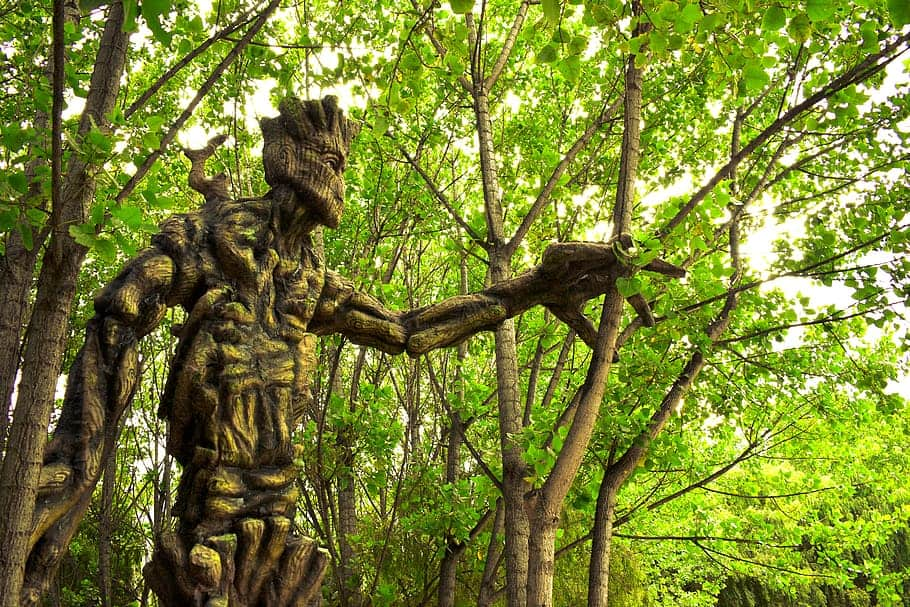 giant-groot-ents-lord-of-the-rings-cusco-wetland-of-huasao-peru