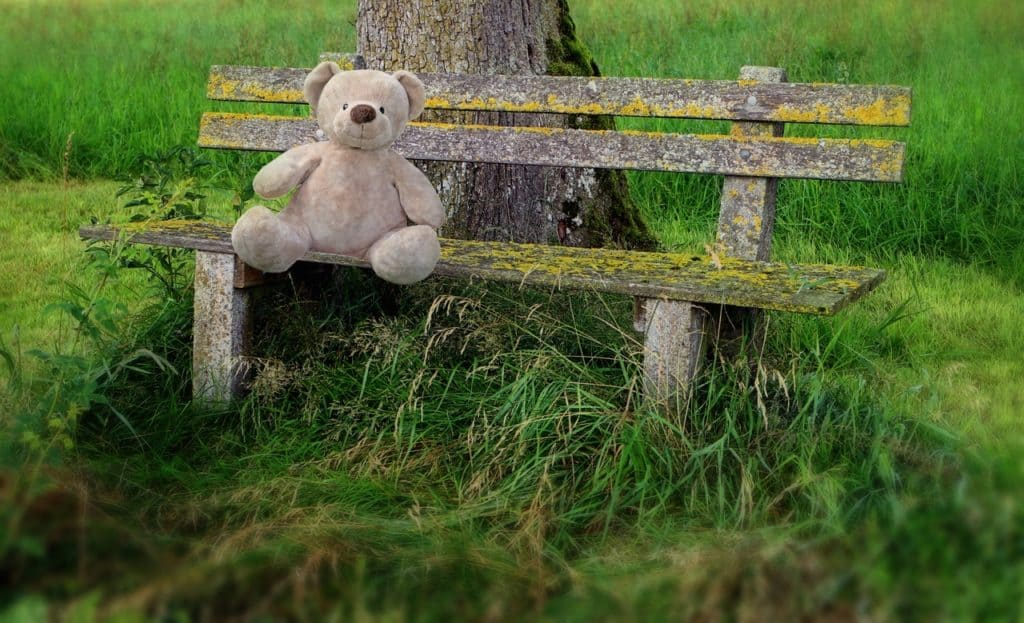 grass-outdoor-cold-winter-bench-flower-662626-pxhere.com