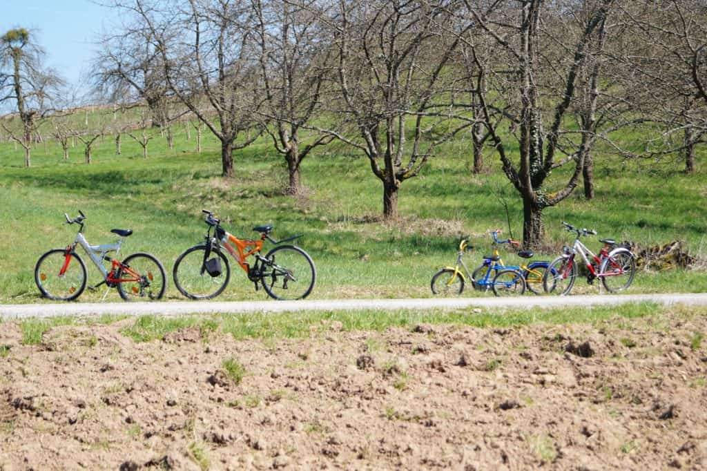 trail-field-round-bicycle-vehicle-peace-889068-pxhere.com (1)