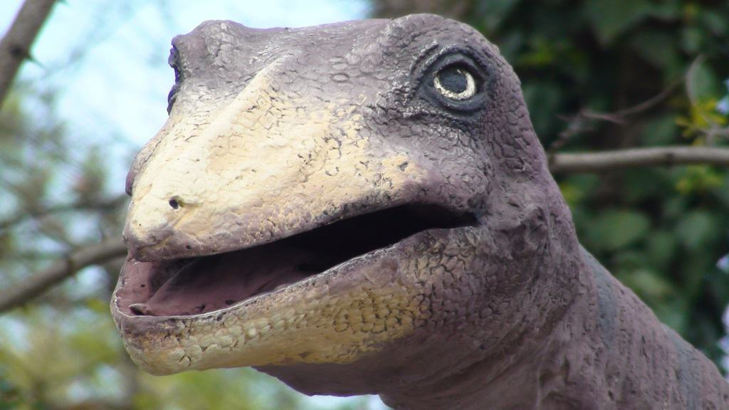 wildlife-beak-fauna-close-up-dinosaur-tyrannosaurus-816874-pxhere.com